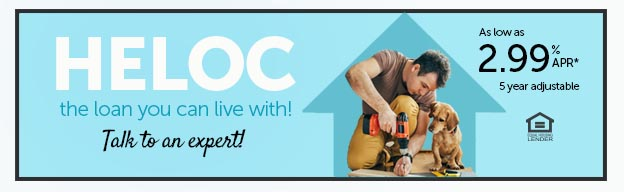 HELOC the loan you can live with.  Talk to an expert!